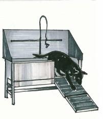 Indianapolis Animal Care & Control-Equipment 2 Design