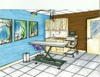 Indianapolis Animal Care & Control-Exam Room 3 Design
